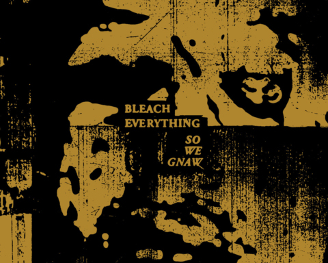Bleach Everything