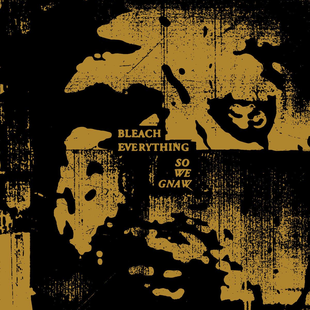 Bleach Everything
